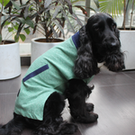 PoochMate Jersey Green & Navy Dog T-Shirt
