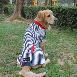 PoochMate Jersey Striped Dog T-Shirt