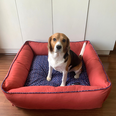 PoochMate Magnolia Blue & Coral Bolster Bed