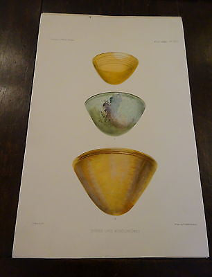 Antique Lithograph c 1903 Ancient Glass Archaeology III