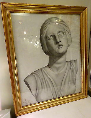 A 19th Century Portrait Graphite Study of a Classical Sculpture