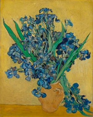 Vincent van Gogh: His Life in Art | Museum of Fine Arts Houston