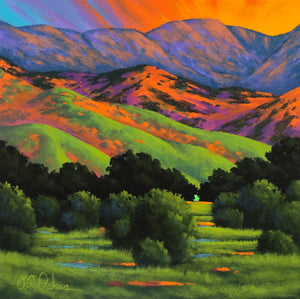 """Foothills Meadow"""