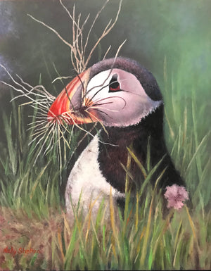 """Homemaker - Atlantic Puffin"""