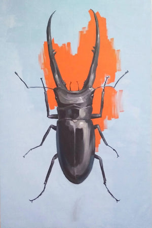 """Orange Beetle"""