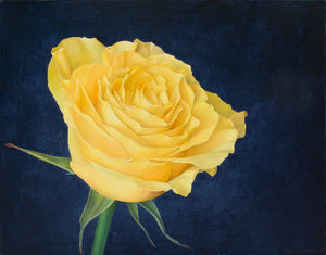 """Just a Yellow Rose…"""