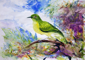 """The Brown Throated Sunbird"""