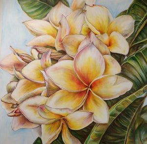 """Frangipani - The Wonderful Smell"""