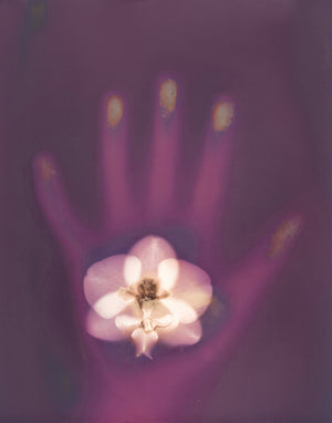 """Orchid in Hand"""
