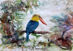 """The Stork-billed Kingfisher"""
