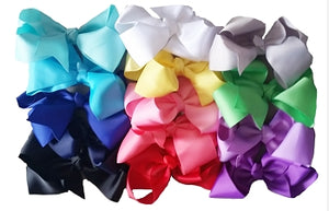 "Large 6"" Boutique Bows"