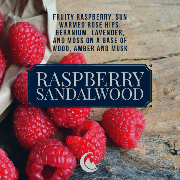 Raspberry Sandalwood Wax Melt Snap Bar