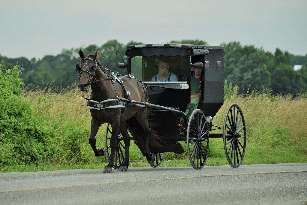 Common Misconceptions About The Amish