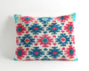 Cora ikat velvet pillow cover - pillowme