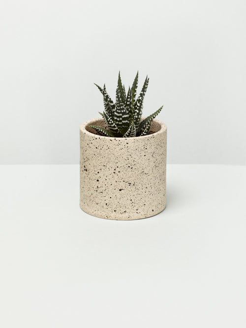 Ella Hookway Small Speckled Plant Pot
