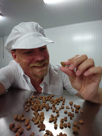 Chocolate Factory Worker Inspecting Tigernuts