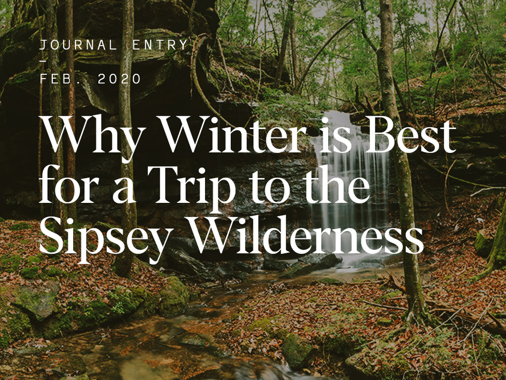 Why Winter is Best for a Trip to the Sipsey Wilderness