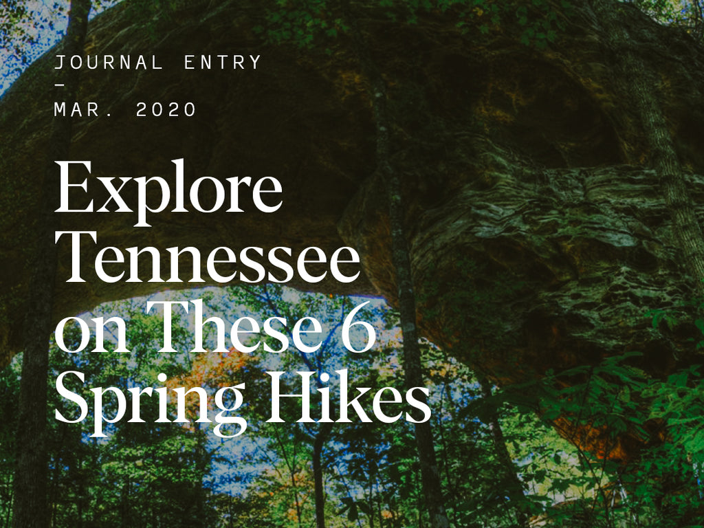 Explore Tennessee on These 6 Spring Hikes