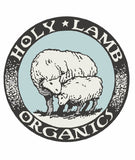 Holy Lamb Organics About the Artisans | Jungle Pillows