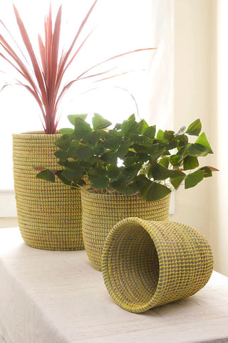 Flora Plant Holders Set of 3 by Swahili African Modern | Jungle Pillows