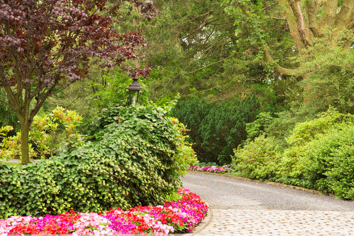 Finishing Touches and Landscaping Ideas for More Curb Appeal
