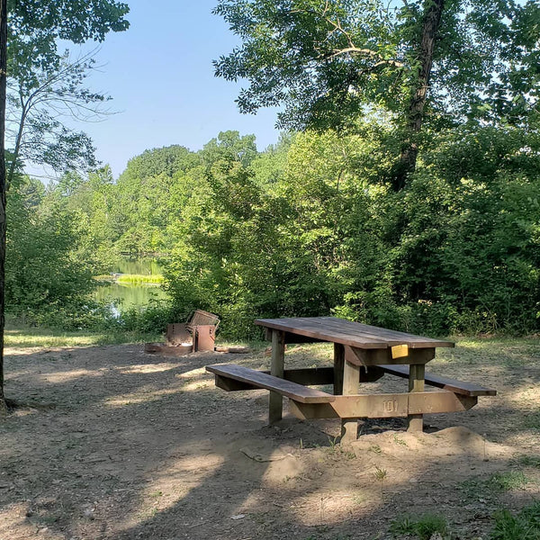 Greene Sullivan State Forest Campgrounds