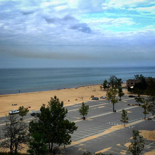 Indiana Dunes State Park Forest Lake