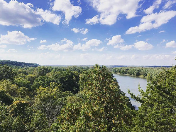 Starved Rock State Park View