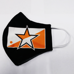 Houston Champion star mask