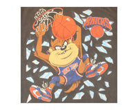 Vintage 90s NY Knicks Taz Vintage T-Shirt │ REVIVAL Clothing