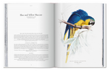 EDWARD LEAR THE PARROTS BOOK