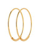 Basic 22 Hoop Earring Gold