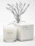maison louis marie no2 le long fond candle
