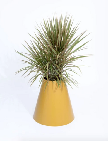 PIECES By An Aesthetic Pursuit Cone Planter Yellow