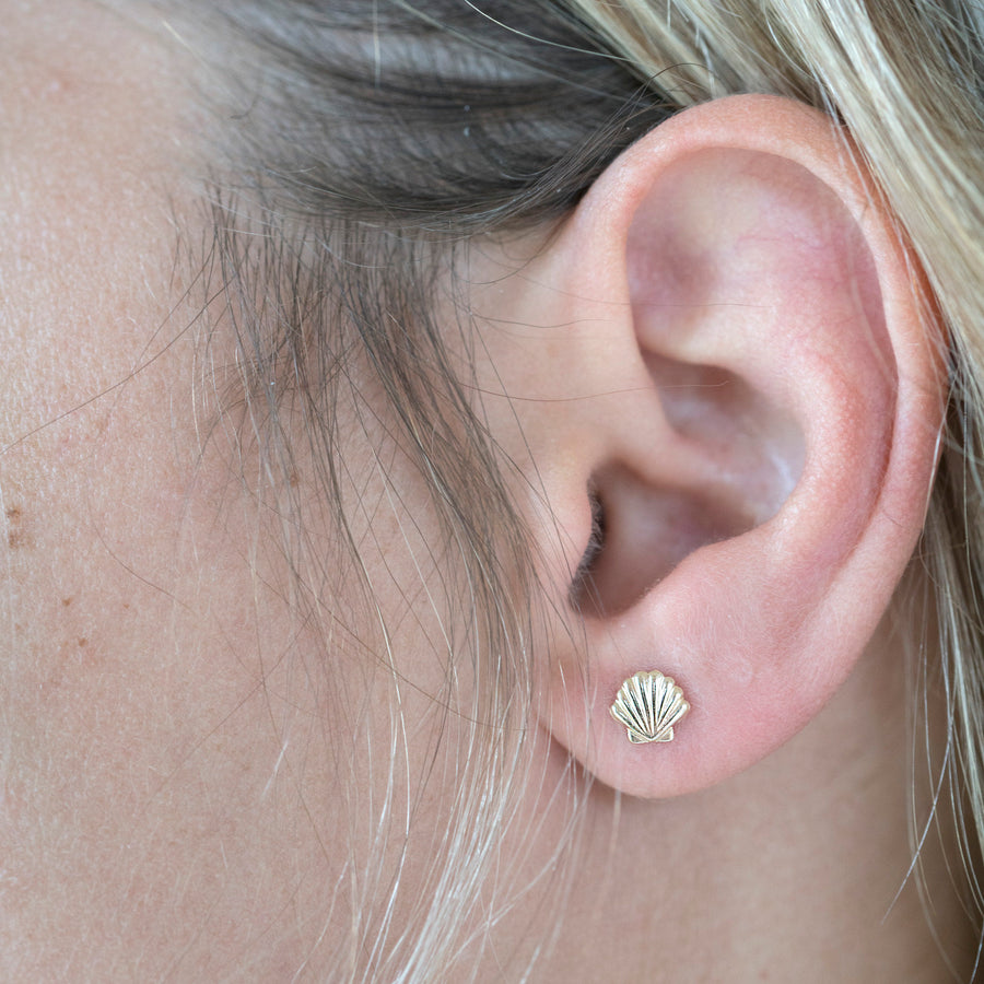 Seashell Earrings, Gold Studs, Seashell Studs, Gold Filled Studs, Earrings, Gold Filled Earrings, 14k Gold Studs