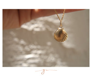 Collar Seashell