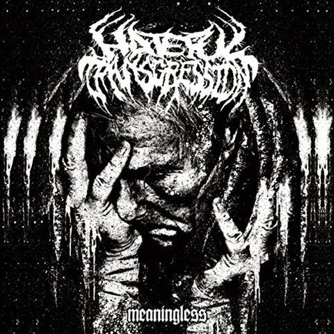 Hateful Transgression - Meaningless