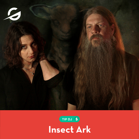 Tip Insect Ark!