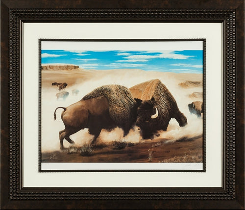 When the majestic buffalo encounters its own kind, plains, limited edition print