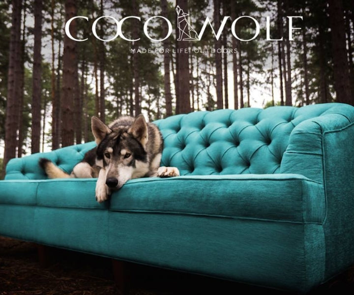 Coco Wolf Bringing Indoor Living To The Outdoor Casa Design Group