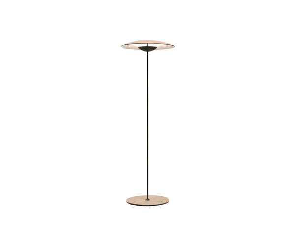 Floor Sample Ginger Floor Lamp