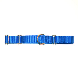 Martingale Collar (Over the Head) - Puppy NM