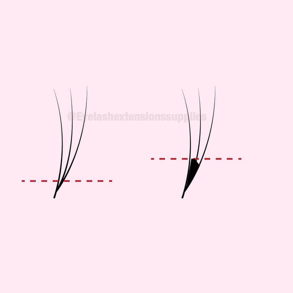 Lash Tips and Tricks