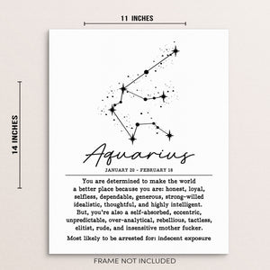 AQUARIUS Funny Zodiac Constellation Wall Decor Art Print Poster