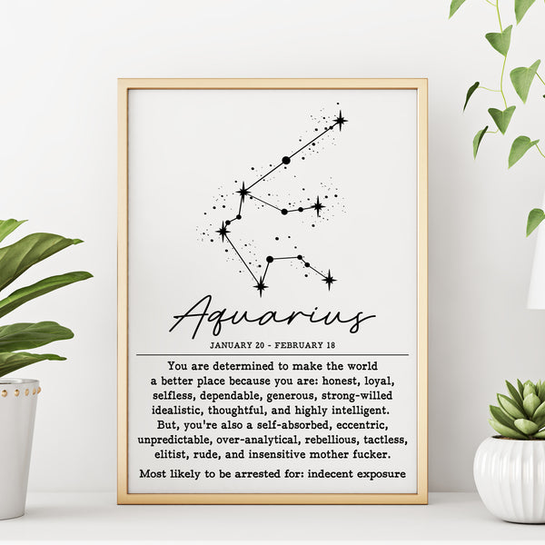 AQUARIUS Funny Zodiac Constellation Home Decor Wall Art Poster Print