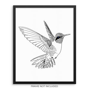 "Hummingbird Minimalist Wall Decor Art Print Poster 8"" x 10"" UNFRAMED"