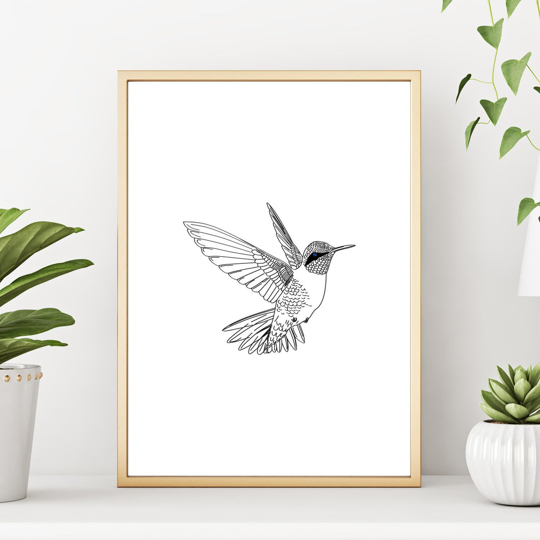 Hummingbird Minimalist Wall Decor Art Print Poster 8