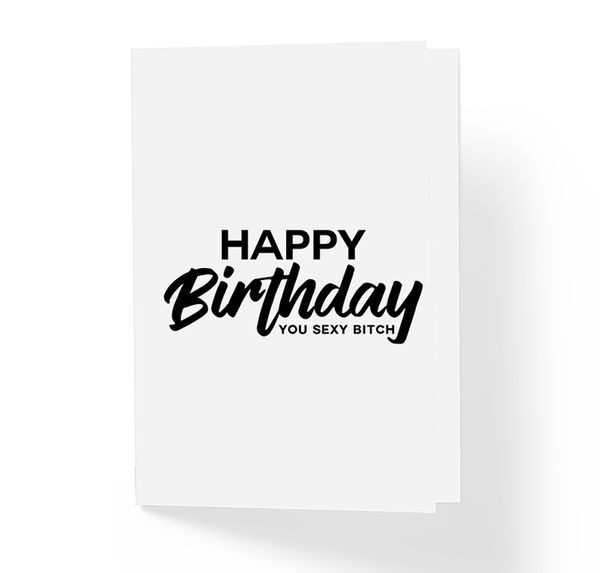 Happy Birthday You Sexy Bitch Witty Friendship B-Day Greeting Card by Sincerely, Not