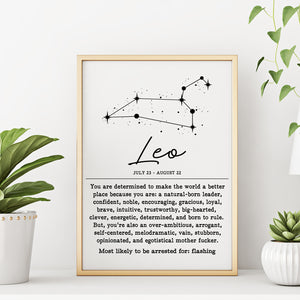 LEO Funny Zodiac Constellation Home Decor Wall Art Print Poster