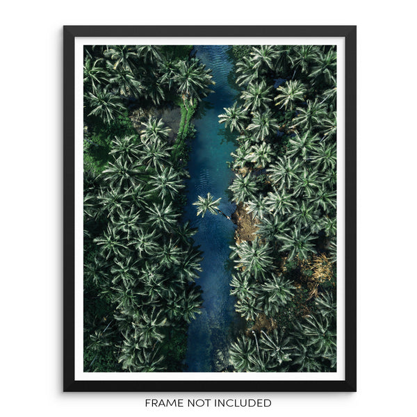 Palm Trees Tropical Jungle River Art Print Boho Wall Poster